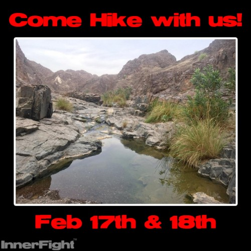 Get out of the Gym and come Hike with us!